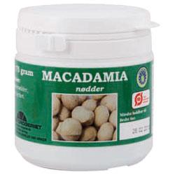 Macadamia nødder store økologiske - 75 gram