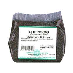 Image of   Loppefrø fra Natur Drogeriet - 1 kg.