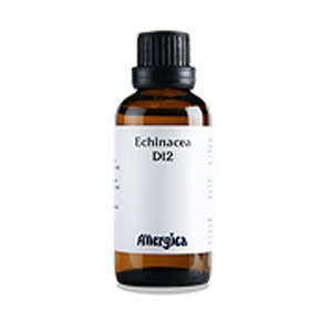 Image of   Echinacea D12 - 50 ml