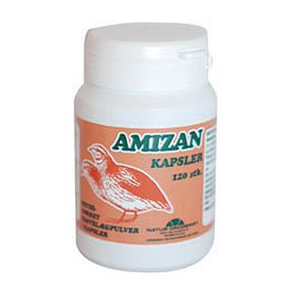 Image of Amizan (vagtelæg) - 120 kapsler