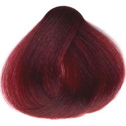 Image of   Sanotint hårfarve Træbær 22