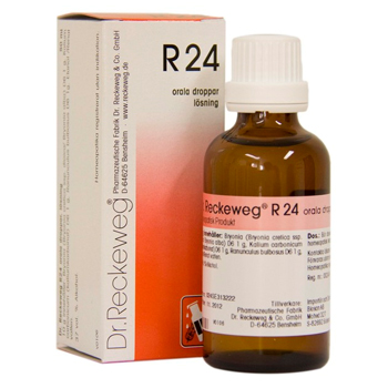 Image of   Dr. Reckeweg R 24 - 50 ml.
