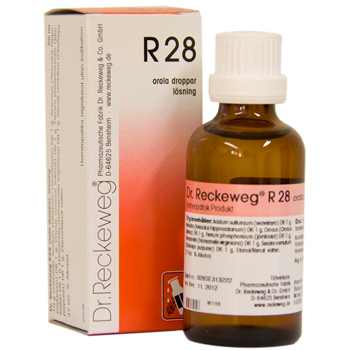 Image of   Dr. Reckeweg R 28 - 50 ml.