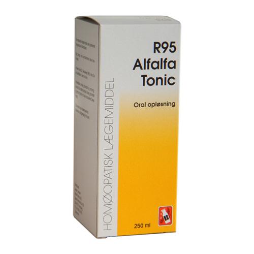 Dr. Reckeweg R 95 - 50 ml.