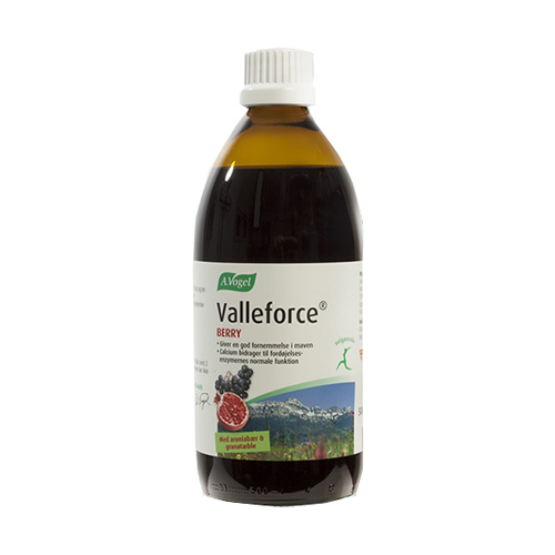Image of A. Vogel Valleforce Berry (500 ml)