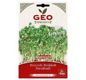 Image of   Broccolifrø økologiske til spiring - 13 gram