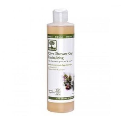 Oliven Shower Gel, fornyende 250 ml.