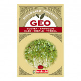 Kløverfrø økologiske til spiring - 70 gram