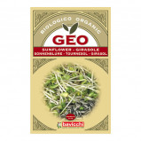 Solsikkefrø økologiske til spiring - 90 gram