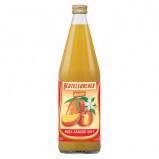 Æble-Mango saft fra Beutelsbacher Øko 750 ml.