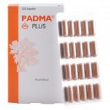 Padma Plus - 120 kapsler