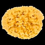 Natursvamp - 13 cm
