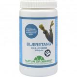 Blæretang - Havalge 400 mg - 90 kapsler