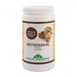 Østersskal 500 mg. - 90 kapsler