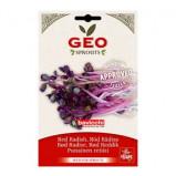 Radisefrø rød til spiring Økologiske - 15 gram