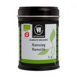 Ramsløg Økologisk fra Urtekram - 6 gram
