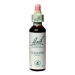 Bachs Klematis (Clematis) 20 ml.