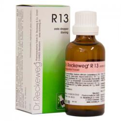 Dr. Reckeweg R 13, 50 ml