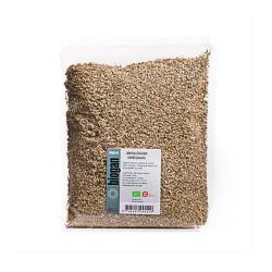 Oregano Økologisk fra Biogan - 100 gram