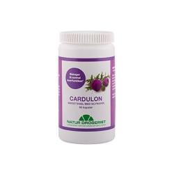 Natur Drogeriet Cardulon 500 mg (90 kapsler)