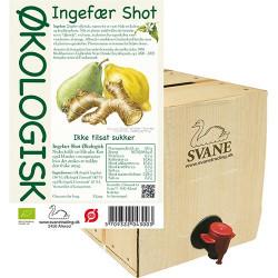Ingefærshot med pære & citron Økologisk - 3 liter