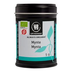 Mynte Økologisk fra Urtekram - 5 gram